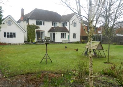 Family Garden with chicken run